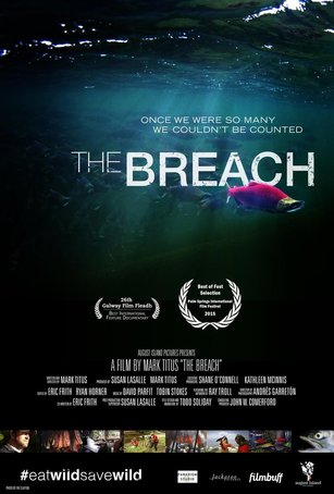 """Poster image for the film """"The Breach"""""""
