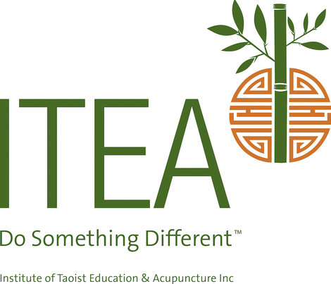 "ITEA logo, reading ""Do Something Different"""