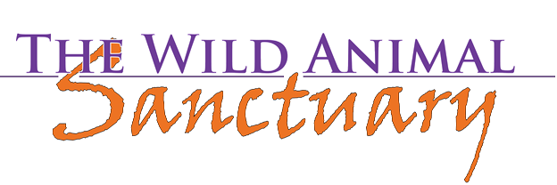 A text-only logo for The Wild Animal Sanctuary