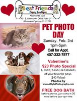 Valentine's Pet Photo Day Feb 3