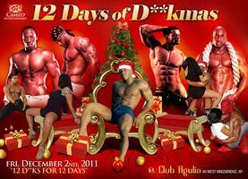 12 Days of D**kmas! (12 D**ks for 12 Days! )