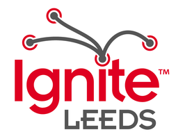 Ignite Leeds {2012}