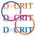 Eventually Everything: The 2012 D-Crit Conference