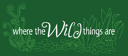 Where the Wild Things Are: 4/28 Foraging Walk with...