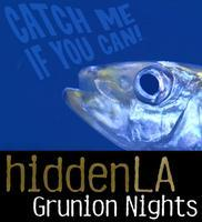 3rd Annual - JULY HiddenLA Grunion Beach Night