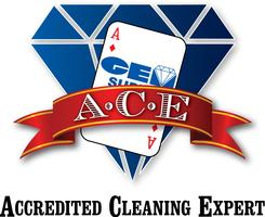ACE Hospital Grade Disinfection and Restroom/Grout...