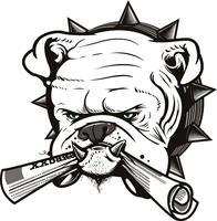 BrowardBulldog.org and Boardroom Communications...