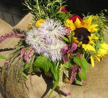 Floral Design, Working with Herbs and Botanicals