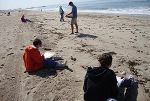 Beach Walk & Sketch with the LA Audubon Society
