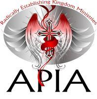 2013 APIA Leadership Intensive - Chicago