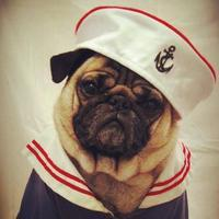"Salty Dog Boating Club ""Love Boat"" themed February..."