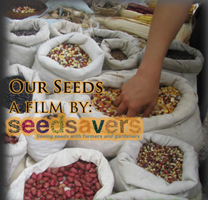 Movie Night @ The Forge: Our Seeds