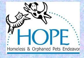 2nd Annual HOPE Spay-ghetti & Neat Balls Dinner