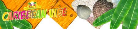 Caribbean Vibe Business Mixer and Referral-Orange, CA