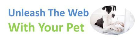 Unleash The Web With Your Pet