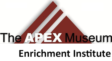APEX Enrichment Institute Launch Event - A Night At...