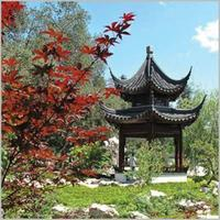 Photographing the Gardens at the Huntington Library wit...