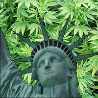 How to Start a Cannabis Business & Cannabis Cultivation Workshop @ New York Cannabis Institute | New York | NY | United States