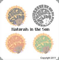 International Natural Hair Meetup Day 2013 Hosted by...
