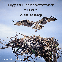 "Digital Photography ""101"" Workshop"