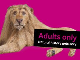 Adults only: Natural history gets sexy