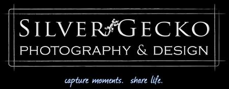 Silver Gecko Photography's Open House & Networking...