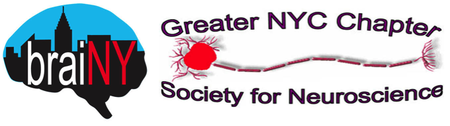 Careers for Neuroscientists in the Non-Profit Sector