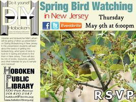Hoboken DIY: Spring Birdwatching in New Jersey