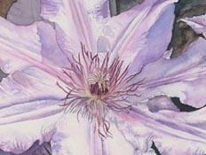 Happy Spring into Watercolor May 7th at 10:30 am