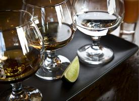 May Agave Soirée with Cavalino Tequila