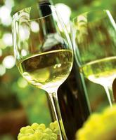 Niagara On The Lake Wine Tour - FULL DAY - July 13th,...