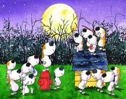 Reserve Space: 2nd Annual Barking at the Moon Festival!