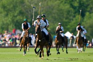 Virginia's House of Hope Polo Benefit For Hope