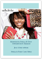 Minnesota Stella & Dot Opportunity Session