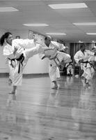 Karate Summer Classes For All Levels!