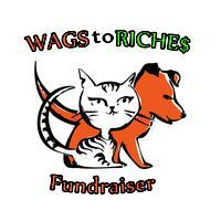 WAGS to RICHE$ Casino Night Fundraiser!