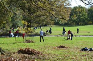 Whole Foods Market - Deep Run Park Clean Up (Kids' Day...