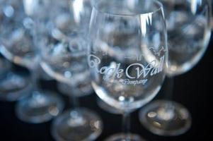 The 2012 Obsideana Release Party!