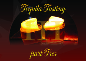 Tequila Tasting - Part Tres