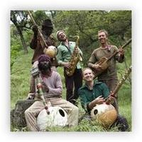 The Dogon Lights (The Bay Area's Legendary Psychedelic...