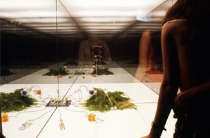 Opening Reception: and Counter Environments...