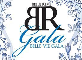 Vie Gala: Celebrating 20 Years of Service at Belle...