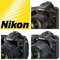 Nikon DSLR Training: D600, D7000, D7100 with Paul Van...