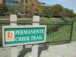 Permanente Creek Workday at Google Campus