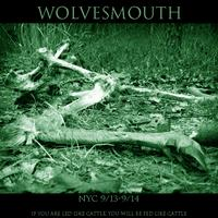 wolvesmouth x NYC