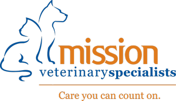 Mission Vet Specialists / Bexar County VMA CE Event
