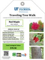 UF/IFAS Extension: Traveling Tree Walk