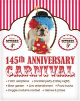SF SPCA's 145th Anniversary: Friday 10/4 Cocktail...