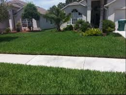 Water Awareness Series: Homeowner Guide to Lawn Care