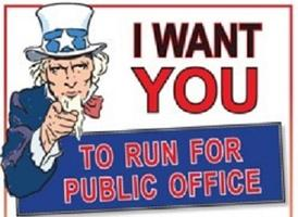 So You Want To Run For Local Office?